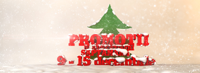 decembrie_9-15-2_0622